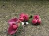 Fuchsia Dazzle ~ Calla Lilies & Spray Roses