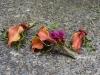 Autumns Desire ~ Mango Calla Lilies With Alstroemeria & Hypericum Berries