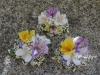 Lavender & Lemon ~ Wrist Style With Orchids & Alstroemeria