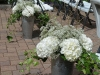 Hydrangeas With Babys Breath & Ivy In Metal Tins ~ Aisle Markers