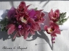Fuchsia pink orchids