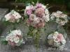 Pink Chiffon ~ Bridal Suite
