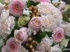 Pink Rapture ~ Details